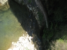 Foto Safari